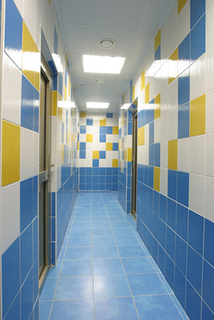 Tile Grout Professional Carpet Cleaning Altoona